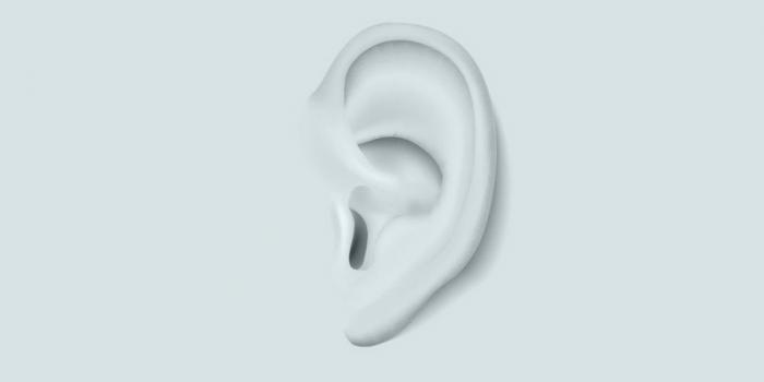 Stiekeme geluidsopnames; luistert de rechter mee?